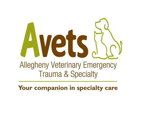 Allegheny Veterinary Emergency Trauma & Specialty