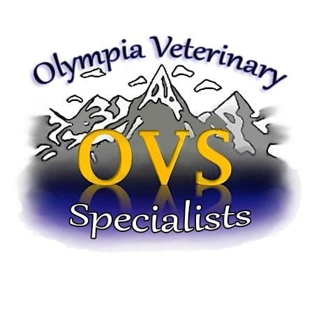 Olympia Veterinary Specialists